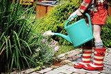 Gartenarbeit im Juni und Juli