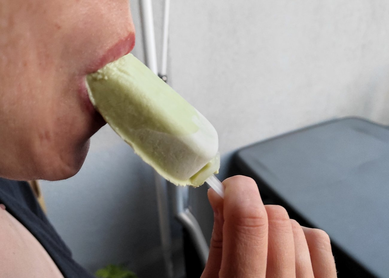Avocado Eis selber machen Rezept