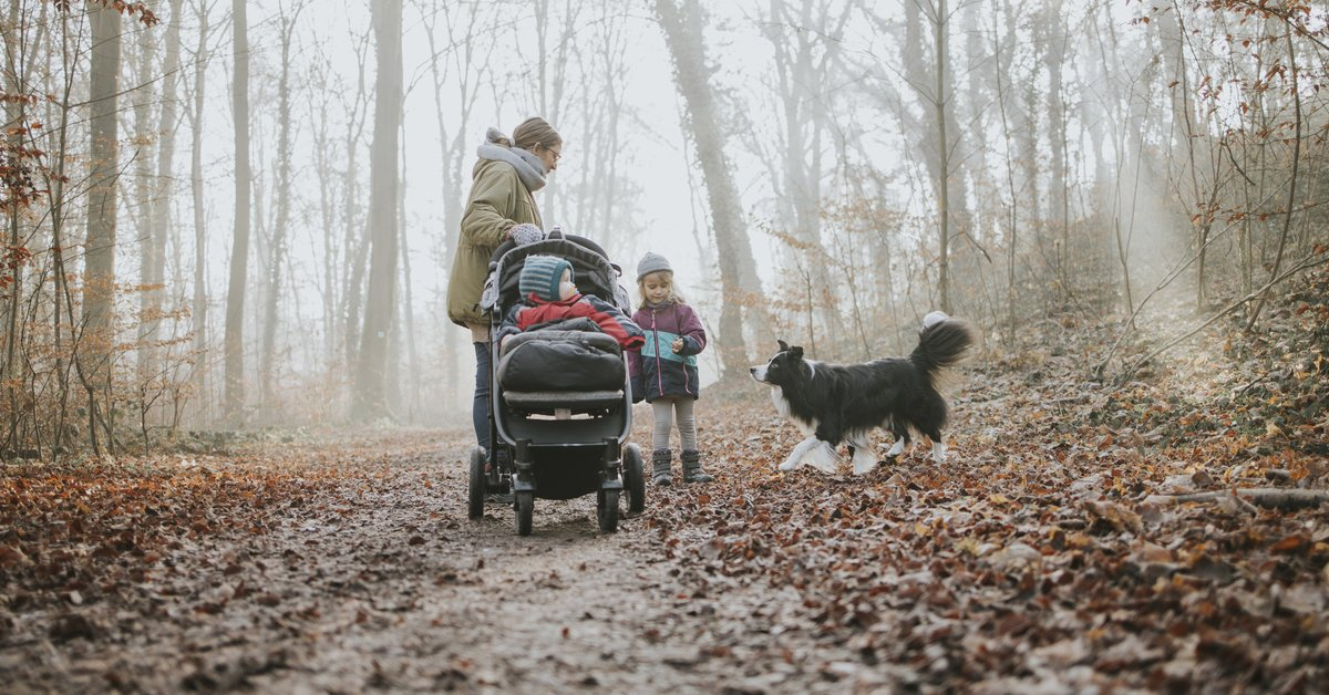 Trittbrett für den Kinderwagen im Test: So fährt euer Kind sicher mit | familie.de